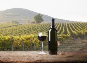 chianti vino toscano