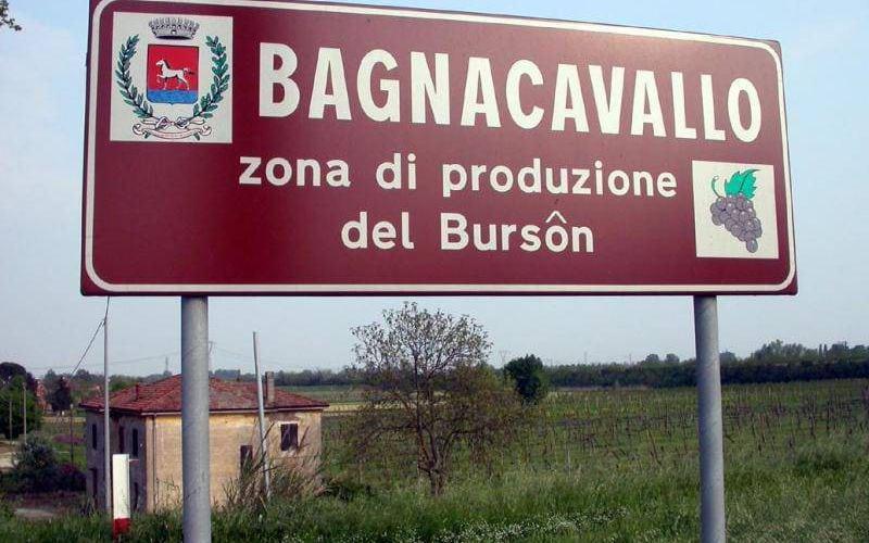 Bagnacavallo, zona di produzione dei vino raro Burson