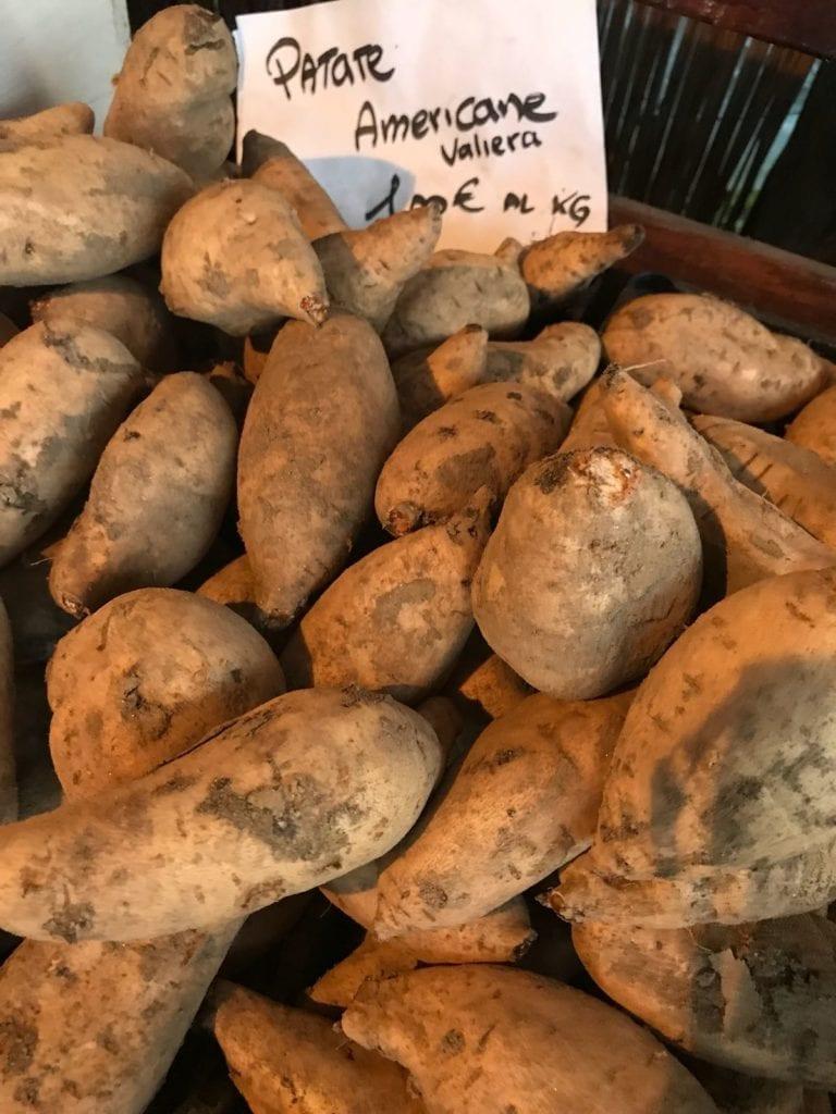 Le patate americane del Polesine