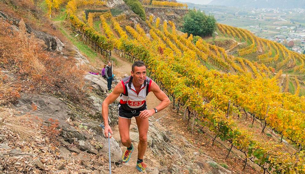 I terrazzamenti della Valtellina (credit photo Meneghello I Valtellina Wine Trail)