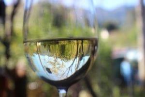 vino bianco bicchiere