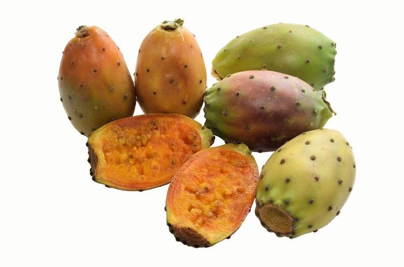 frutto fico d'india