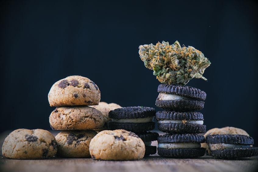 cannabis cibo