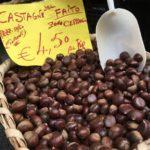 castagna-monte-faito-campania