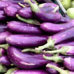 melanzana-cima-di-viola-prodotti-campania
