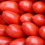 pomodoro-sammarzano-prodotti-campania