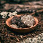 tartufo-nero-colliano-bagnoli-irpino