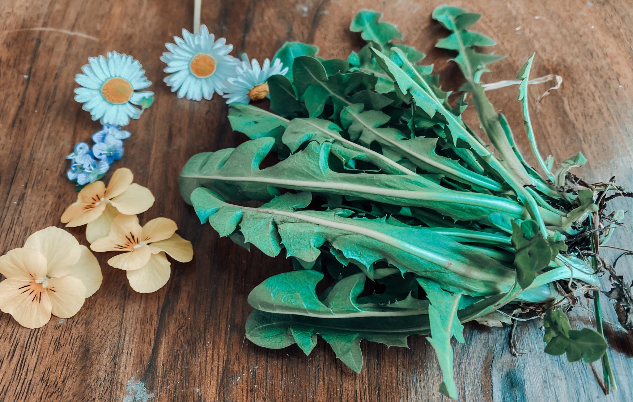 Fiori Da Piantare Nell Orto primavera in quarantena tra orto e giardino, erbe
