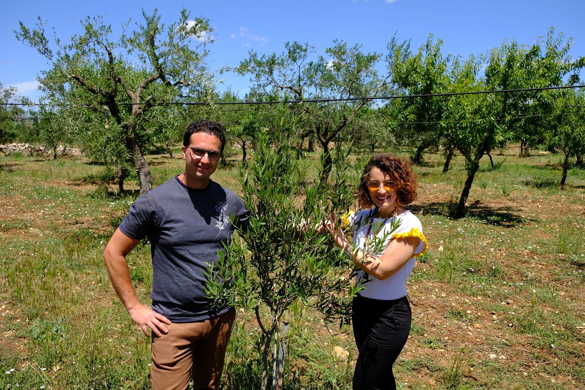 Adopt Me Italy Puglia adozione ulivo