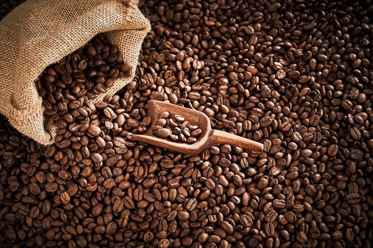 caffè slow food