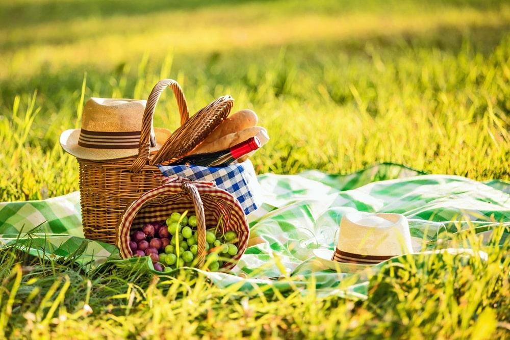 picnic cosa portare