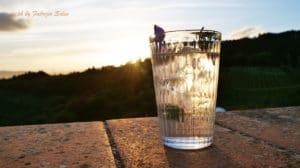 gin tonic toscano