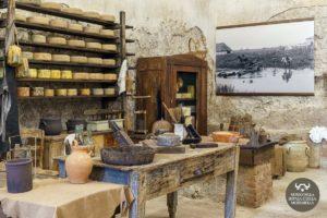 museo-della-bufala-e-della-mozzarella