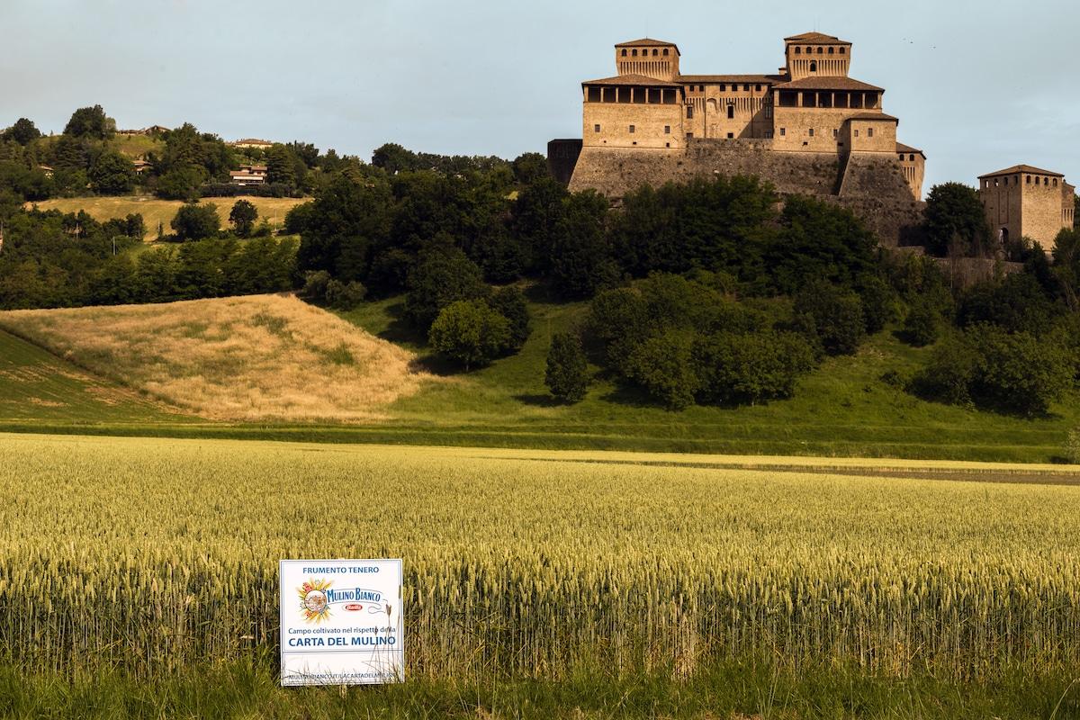 Torrechiara (Parma): Azienda Agricola Aschieri. Carta del Mulino. Casetta e cartello.