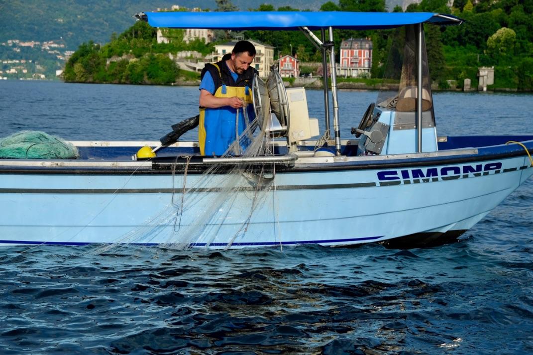 pesce-di-lago-maggiore-pescatori