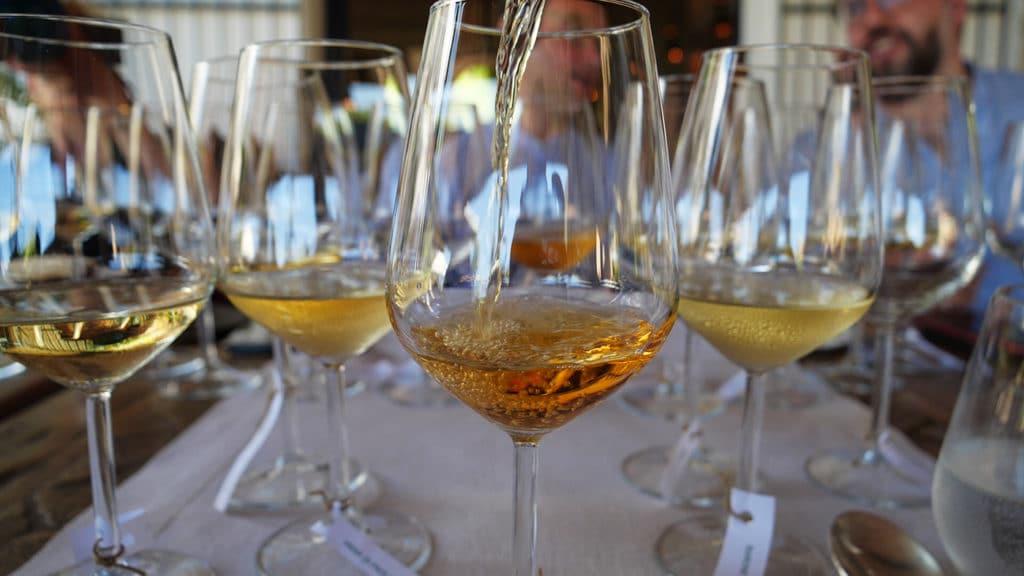 malvasia vino