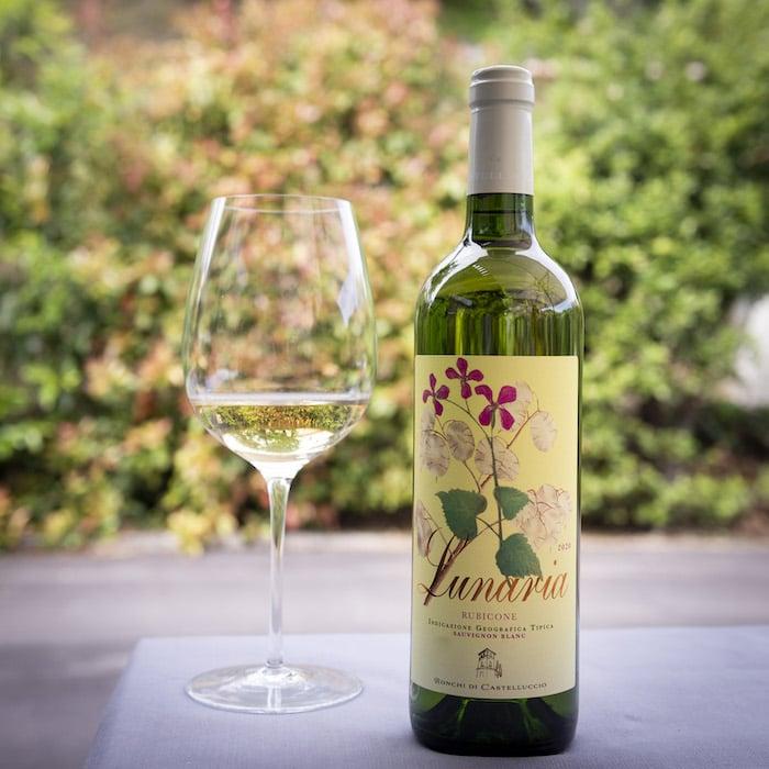 Lunaria Sauvignon Blanc Ronchi di Castelluccio