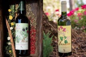 Ronchi di Castelluccio vini